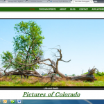 Web Page Review: Photographer's Site Gets Conversion & Copy Suggestions