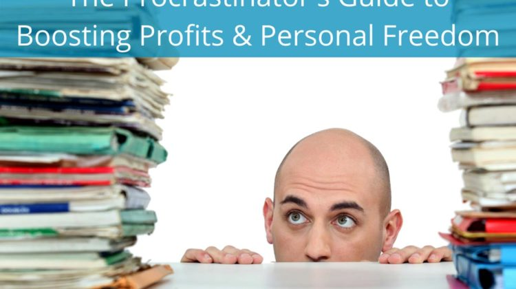 The Procrastinator's Guide to Boosting Profits & Personal Freedom