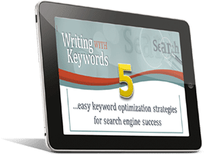 Keyword Optimization Strategies | Panda, Penguin & Hummingbird Success